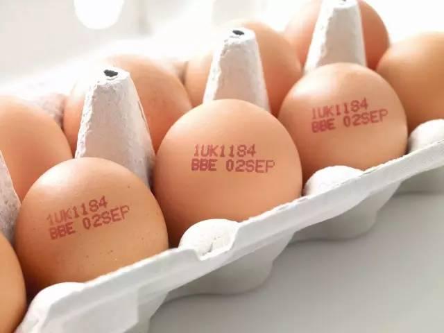伟迪捷鸡蛋喷码机:立夏要吃蛋,你却不懂它