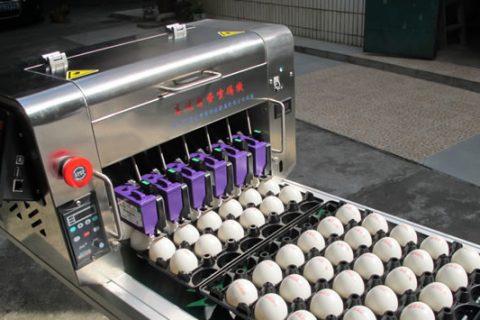 鸡蛋喷码机系列