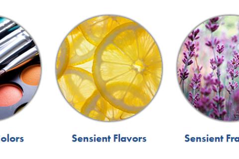 Sensient Technologies数字墨水业务被出售