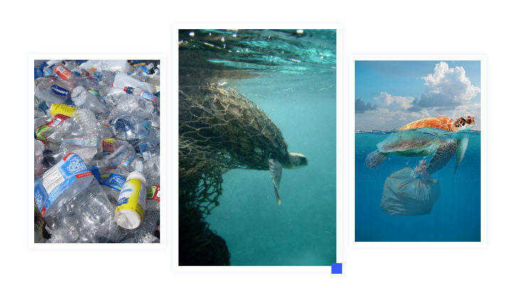 依玛倡导环保≠禁塑,塑料污染如何破局?