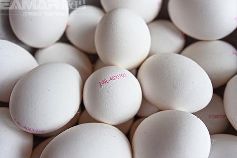 鸡蛋喷码机样品效果