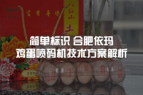 浏览全球网络,您还能找到比这个更全面的鸡蛋喷码机解决方案吗?